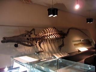 20060803museum4