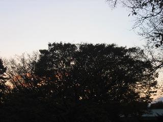 20071107aki1
