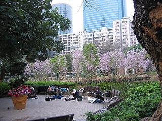 20070316hongkong4