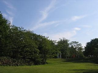 20070609arte1
