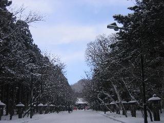 20080114jingu1