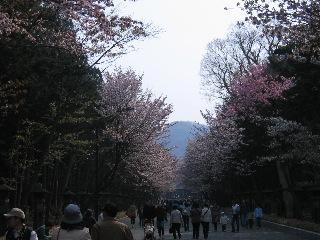 20080426a