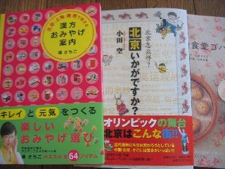 20080628book