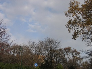 20081104c