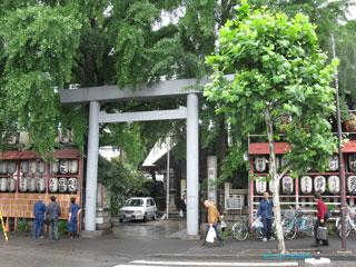 20090608tsukiji1