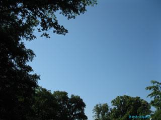 20090625b