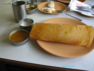20100310india2
