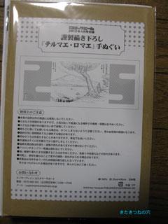 20100315termae2