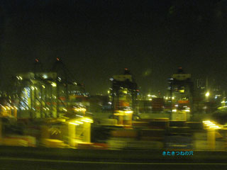 20110102hongkong3