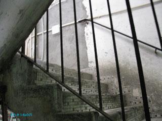 20110109hongkong7