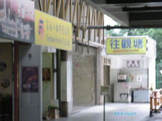 20110112hongkong3