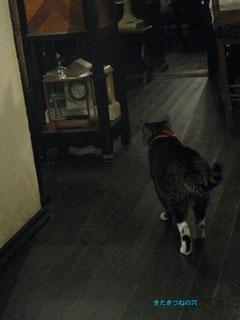20110925kyoto1