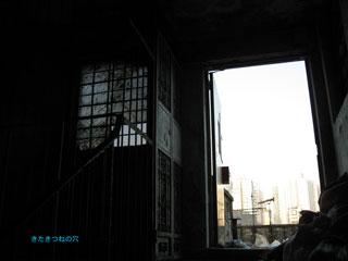 20120109hongkong6