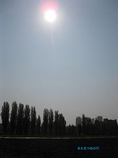 20120521nisshoku2