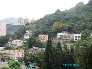 20131201hongkong3