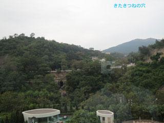 20131226hongkong3