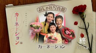 20120331carnation2